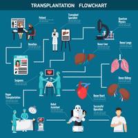 Layout do Fluxograma de Transplante vetor