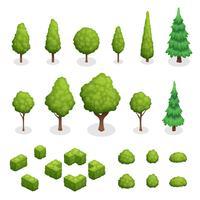 Parque conjunto isométrico de plantas vetor