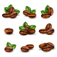Conjunto realista de grãos de café
