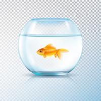 Golden Fish Bowl Realistic Transparente vetor