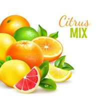 Cartaz de fundo realista de mistura de frutas cítricas