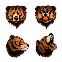 Cabeças de urso isolado colorido vetor