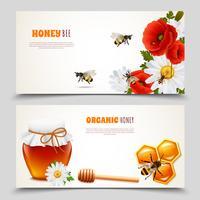 Conjunto de Banner de mel vetor
