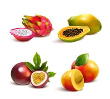 Conjunto de frutas tropicais maduras