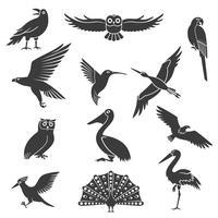 Conjunto de ícones pretos de silhuetas de pássaros estilizados