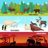 conjunto de bandeiras animais plana