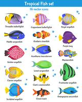 Conjunto de ícones de peixes tropicais vetor