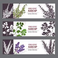 Banners de loja orgânica com ervas vetor