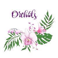 Quadro de design floral. Orquídea, eucalipto, vegetação. Cartão de casamento.