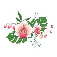 Grupo floral tropical exótico do projeto do vetor das flores da orquídea do paphiopedilum dos ramalhetes.