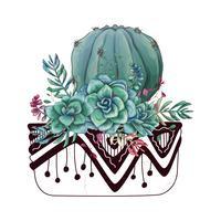 Cartão com conjunto de cactos e suculentas. Plantas do deserto. vetor
