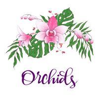 Quadro de design floral. Orquídea, eucalipto, vegetação. Cartão de casamento. vetor