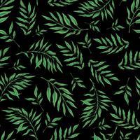 Vetorial mão desenhada sem costura padrão com ramo de orquídea estilizada para seu projeto sobre o fundo preto