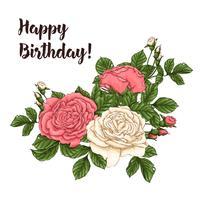 Rosas de coral de cartão postal. Mão, desenho, vetorial, ilustração vetor