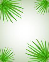 ilustração em vetor ramo de palma