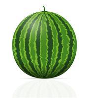 ilustração em vetor melancia madura suculenta