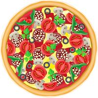 ilustração vetorial de pizza vetor
