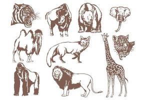 Pacote de vetores de animais selvagens