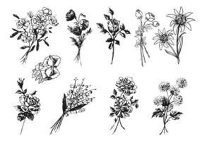 Pacote de vetores de flores gravadas
