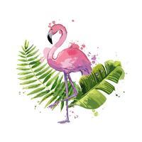 Flamingo cor-de-rosa do vetor com as folhas tropicais exóticas isoladas em um fundo branco.