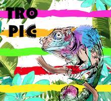 Cartão colorido com camaleão e folhas tropicais. vetor