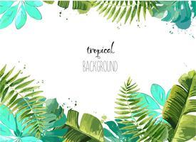 Fundo com folhas tropicais. vetor