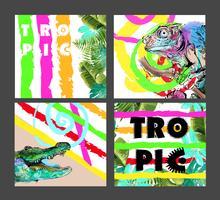 Conjunto de cartões coloridos com animais exóticos e folhas tropicais.