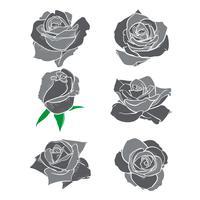 Flores rosas, botões e folhas verdes. Conjunto de rosas coleção. ícone rosa e símbolo vetor