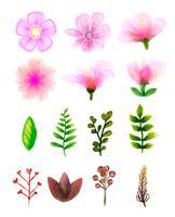 Conjunto floral vetor. Coleção floral colorida com folhas e flores, desenho aquarela.