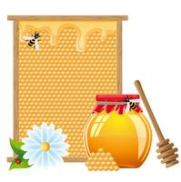 ilustração vetorial de mel natural