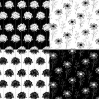 padrões florais botânicos de mão branca e preta desenhada