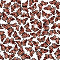 Padrão sem emenda de borboleta. Fundo dos animais selvagens das férias de verão. vetor