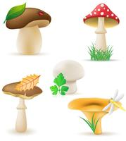 conjunto de ícones ilustração vetorial de cogumelos
