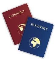 ilustração vetorial de passaporte