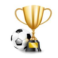 Taças de troféu de ouro 3D e bola de futebol 002