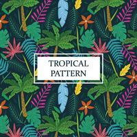 Tropical padrão com palmeiras e folhas vetor