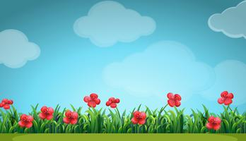 Cena com flores vermelhas no campo vetor