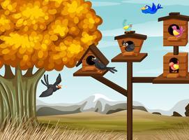 Muitos pássaros que vivem na casa de passarinho vetor