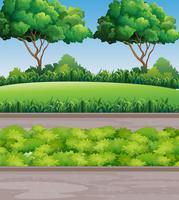 Cena no parque com gramado e árvores vetor