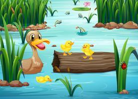 Um lago com animais vetor