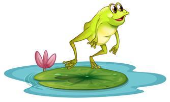 Um sapo na lagoa vetor