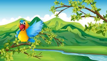 Um papagaio perto do rio vetor