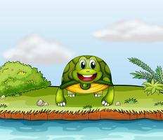 Uma tartaruga na beira do rio