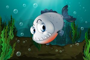 Um peixe com grandes presas no fundo do mar