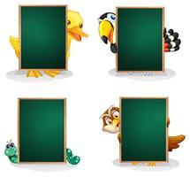 Placas verdes vazias com animais na parte de trás
