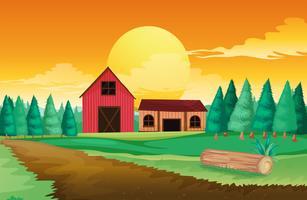 Casas de fazenda perto dos pinheiros vetor