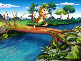 Um macaco atravessando o rio