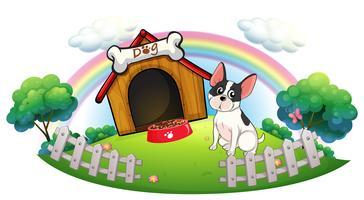 Um cachorro com uma casinha de cachorro e uma comida de cachorro dentro da cerca