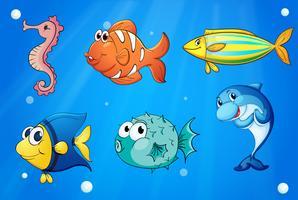 Criaturas marinhas coloridas vetor