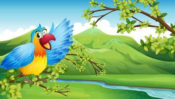 Um papagaio grande e colorido perto do rio vetor